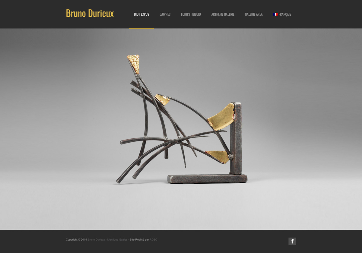 rdsc bruno durieux website screenshot