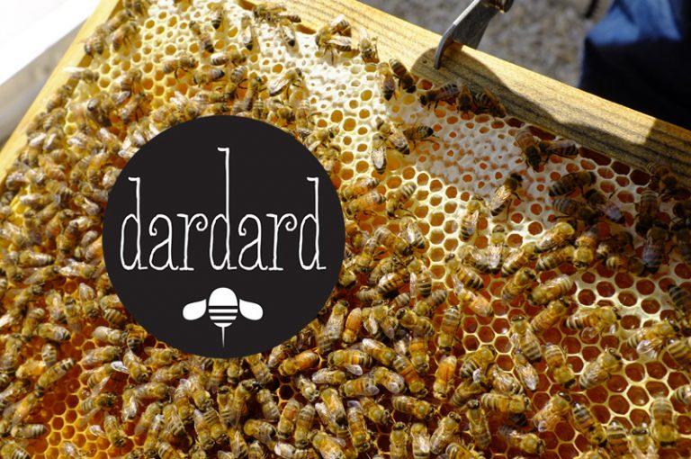 rdsc dardard website cover