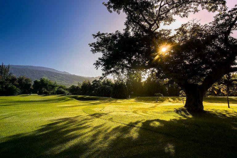 rdsc golf bourbon website cover