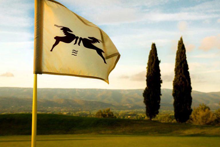 rdsc golf pont royal website cover